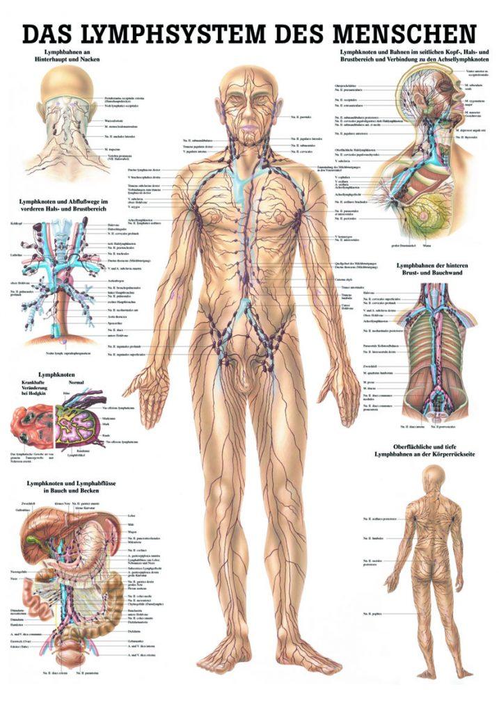 Gesundheitspraxis Frauenfeld Lymphdrainage